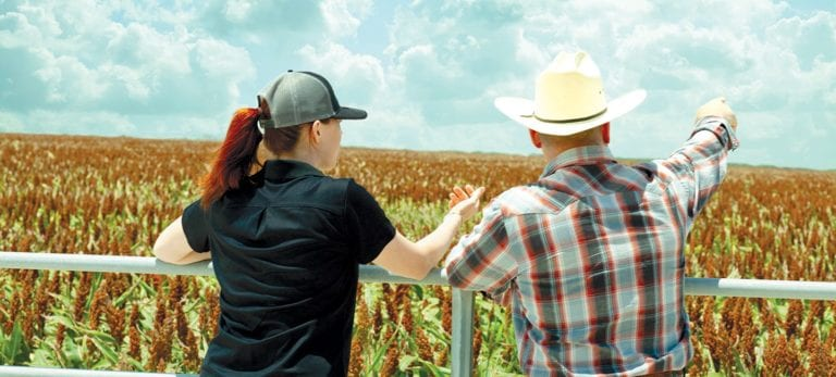 Two people looking over a field of crops.