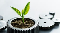 Plant sprouting out of gears.